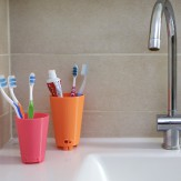 TOOTHY toothbrush holder C