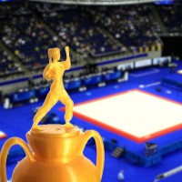 3D Trophy – Women Martial Arts